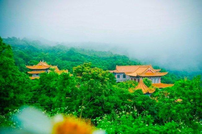 广东最美森林公园-观音山森林公园