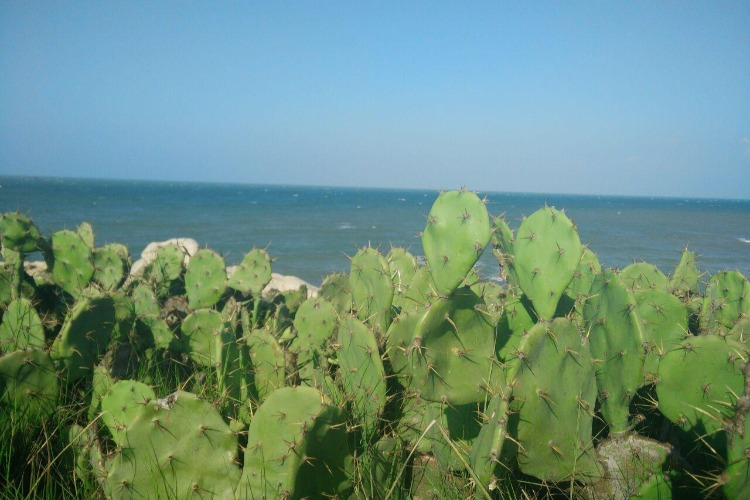 海南西线出游攻略,棋子湾,玻璃海