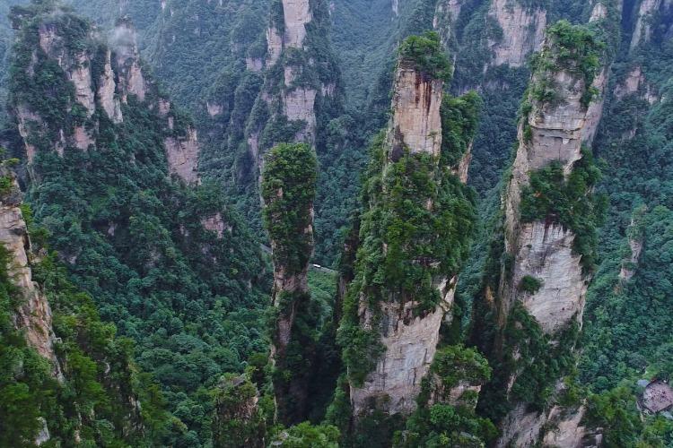 湖南良心景区,武陵源风景区