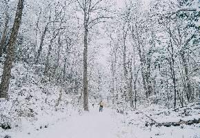 虎峰岭位于黑龙江省亚布力林业局最东部的虎峰林场境内,虎峰岭天然生态景区就处于大亚布力黄金旅游带的中间。因其特殊的地理位置,现已融入了亚布力滑雪场、雪乡、虎园、影视城、小九寨、五指山黄金旅游带中。