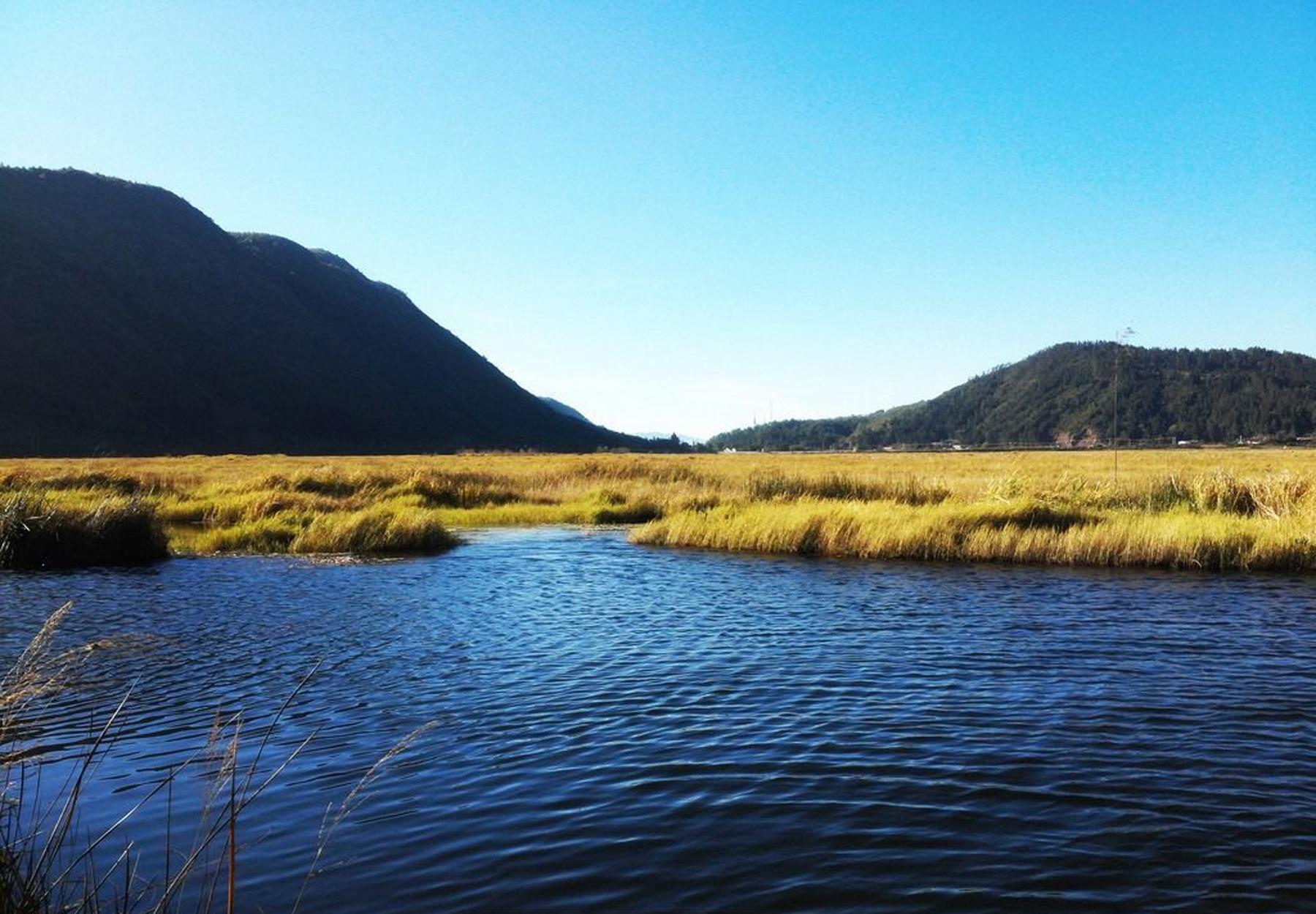 """北海湿地保护区四面环山,大片漂浮于水面的陆地犹如五彩缤纷的巨型花毯,绚丽而又神奇。每年的4月中旬至5月,是北海兰花绽放的时节,也是北海最美的季节,空气里飘着草叶的清香,芦苇丛中不时传来嘎嘎的野鸭叫,湖面上不时有游人初踩草排的惊喜叫声。泛舟湖面,宛若置身在大草原,只不过这片""""大草原""""是漂浮在水上的。"""