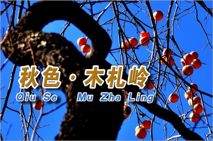 洛阳伏牛山国家自然保护区,木札岭独领风骚