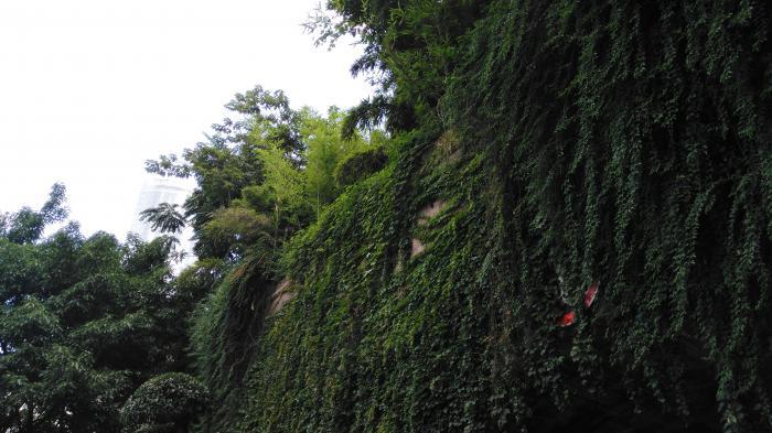 【自驾游攻略】重庆之旅1:大足石刻,朝天门,洪崖洞,磁器口