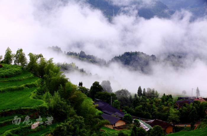 【自驾游攻略】云和梯田,云飞雾缈的华东最大梯田别样美